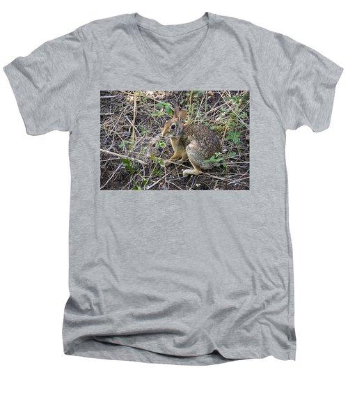 Cedar Hill Bunny Men's V-Neck T-Shirt