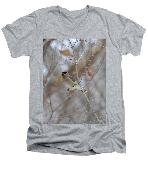 Cedar Wax Wing 2 Men's V-Neck T-Shirt by David Arment