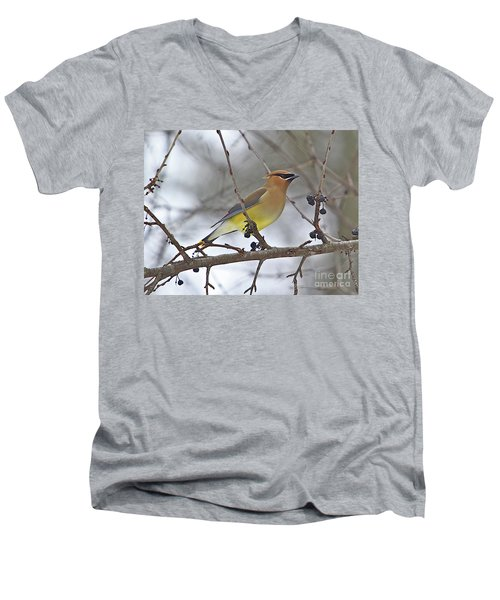 Cedar Wax Wing-2 Men's V-Neck T-Shirt by Robert Pearson