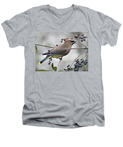 Cedar Waxwing 2 Men's V-Neck T-Shirt