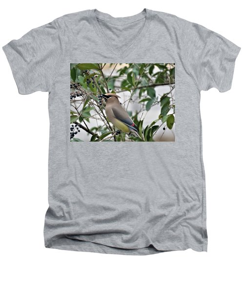 Cedar Waxwing 3 Men's V-Neck T-Shirt
