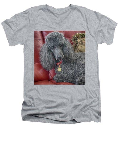 Cedric Men's V-Neck T-Shirt