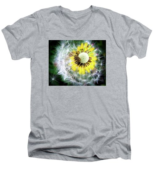 Celebration Of Nature Men's V-Neck T-Shirt