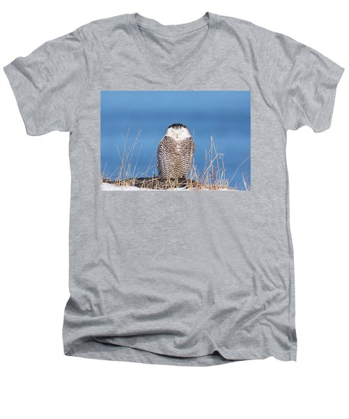 Centered Snowy Owl Men's V-Neck T-Shirt