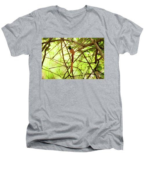 Ceylon Paradise Flycatcher Men's V-Neck T-Shirt