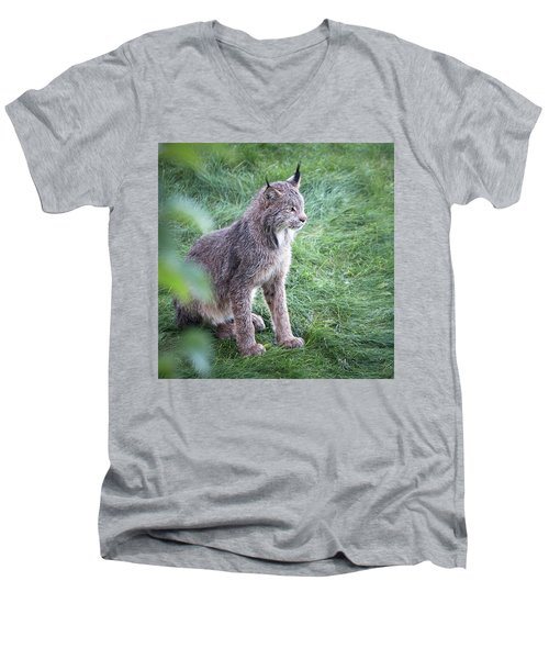 Champion Mama Lynx Men's V-Neck T-Shirt
