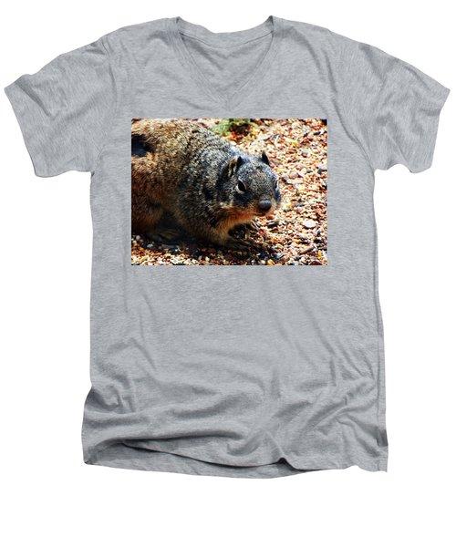 Charlie Men's V-Neck T-Shirt by Joseph Frank Baraba