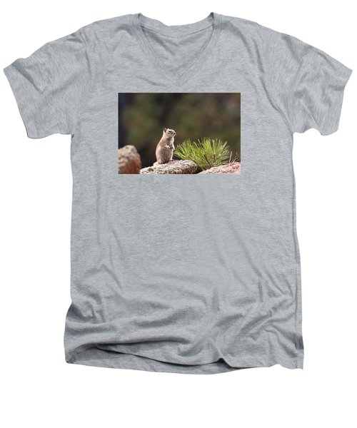 Men's V-Neck T-Shirt featuring the photograph Checking Things Out by Monte Stevens
