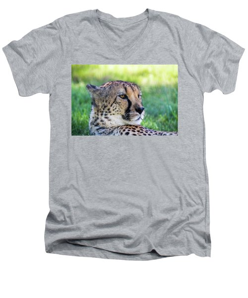 Cheetah Men's V-Neck T-Shirt