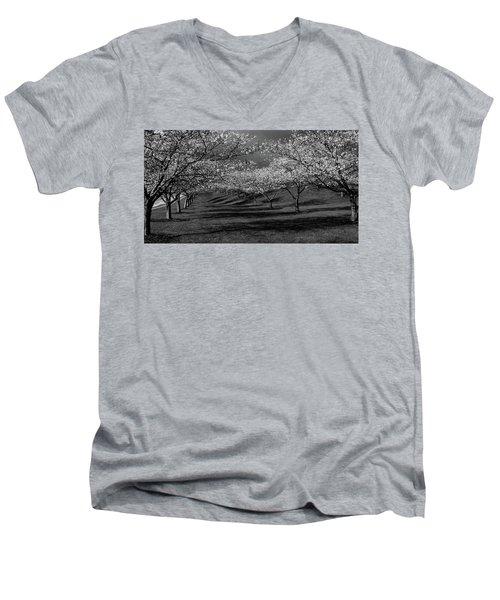 Cherry Blossoms 1 Men's V-Neck T-Shirt