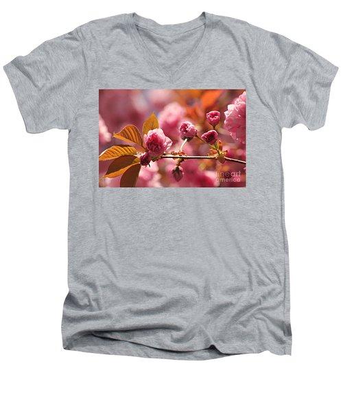 Cherry Blossoms Men's V-Neck T-Shirt by Judy Palkimas