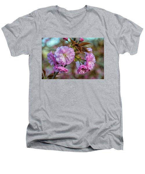 Cherry Blossoms Men's V-Neck T-Shirt by Pat Cook