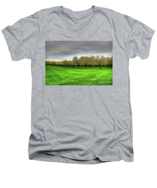 Cherry Trees Forever Men's V-Neck T-Shirt