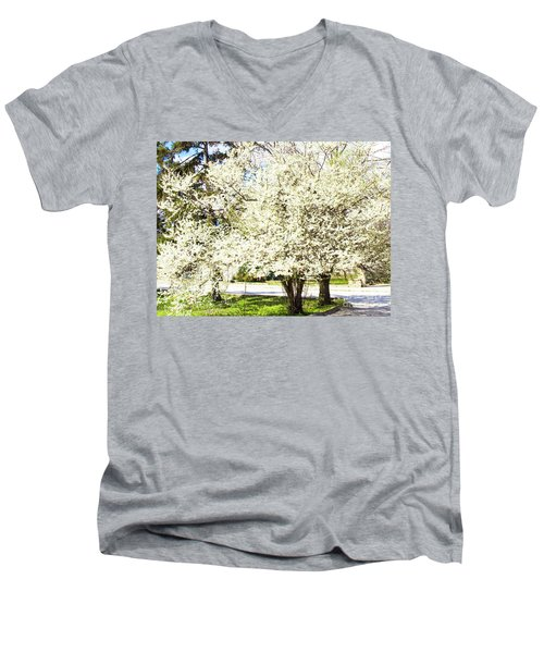 Cherry Trees In Blossom Men's V-Neck T-Shirt by Irina Afonskaya