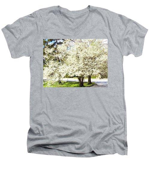 Cherry Trees In Blossom Men's V-Neck T-Shirt