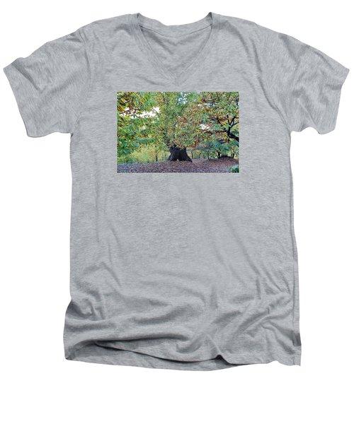 Chestnut Tree In Autumn Men's V-Neck T-Shirt by Goyo Ambrosio