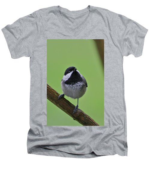 Men's V-Neck T-Shirt featuring the photograph Chic A Ddd by Cathie Douglas