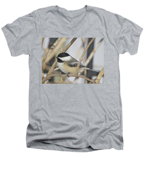 Chickadee-5 Men's V-Neck T-Shirt