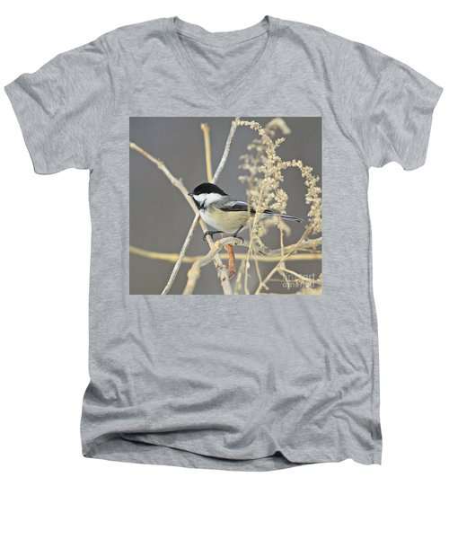 Chickadee-8 Men's V-Neck T-Shirt