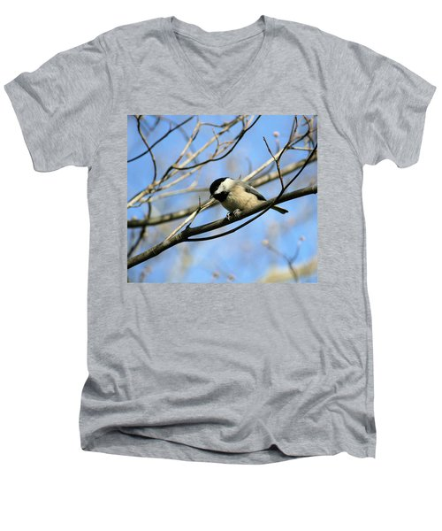 Chickadee Men's V-Neck T-Shirt by Cathy Harper