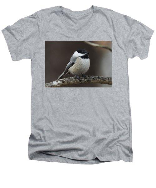 Chickadee Men's V-Neck T-Shirt by Diane Giurco