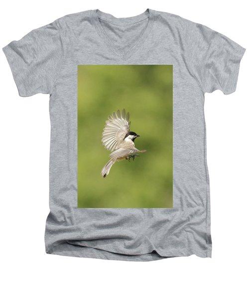Chickadee In Flight Men's V-Neck T-Shirt by Alan Lenk