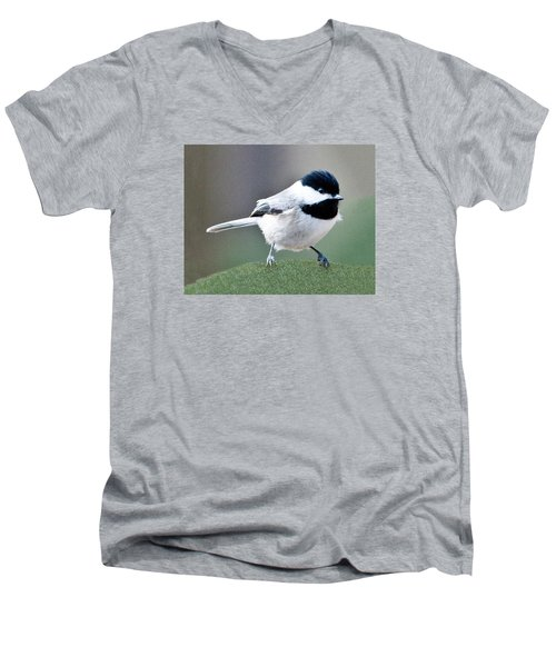 Chickadee Profile Perched 944 Men's V-Neck T-Shirt