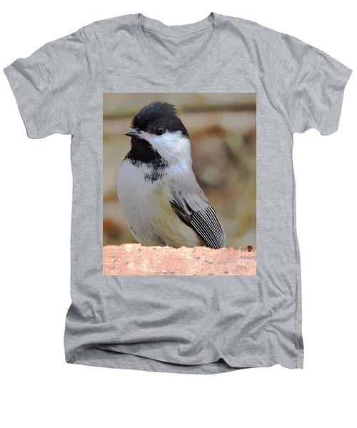 Chickadee's Winter Reverie Men's V-Neck T-Shirt