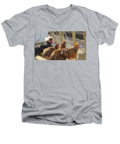 Men's V-Neck T-Shirt featuring the photograph Chicken Protest by Jeanette Oberholtzer