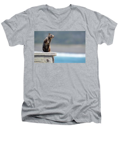 Chilly Squirrel Men's V-Neck T-Shirt