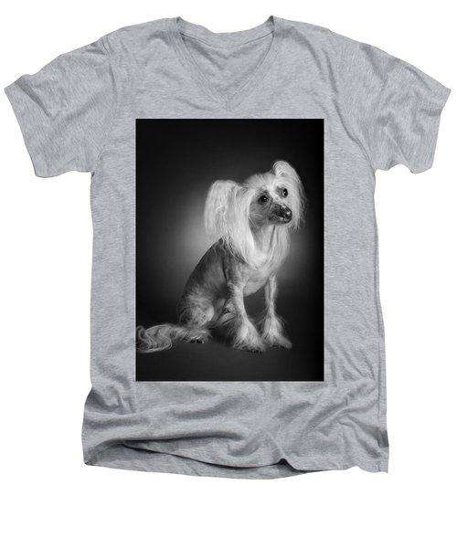 Men's V-Neck T-Shirt featuring the photograph Chinese Crested - 03 by Larry Carr