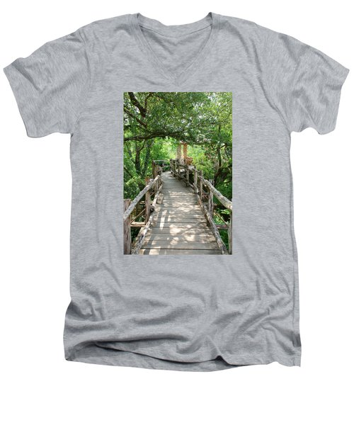 Chinese Garden Men's V-Neck T-Shirt