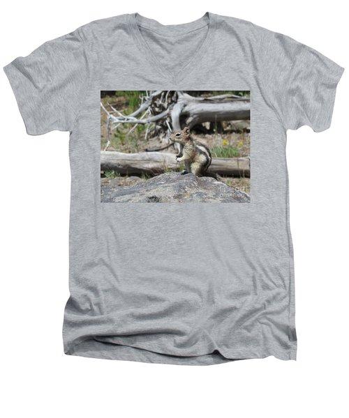 Chipmunk At Yellowstone Men's V-Neck T-Shirt by Ausra Huntington nee Paulauskaite