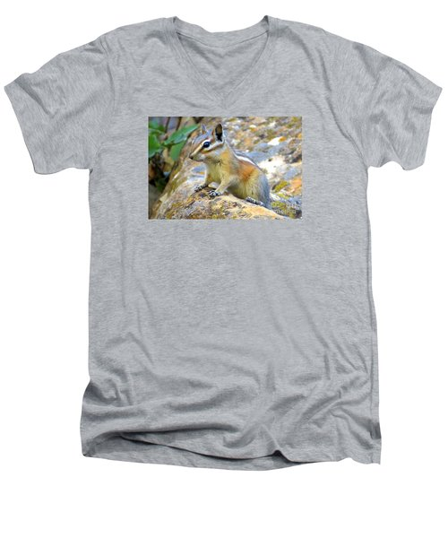Chipmunk Men's V-Neck T-Shirt