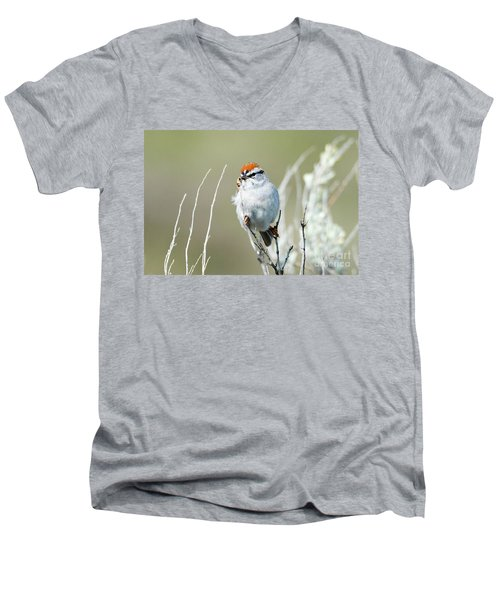 Men's V-Neck T-Shirt featuring the photograph Chipping Sparrow by Mike Dawson