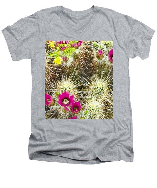 Cholla Cactus Blooms Men's V-Neck T-Shirt