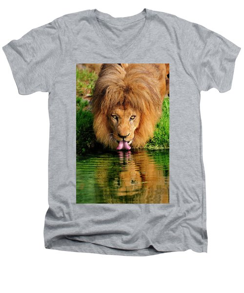 Christmas Lion Men's V-Neck T-Shirt