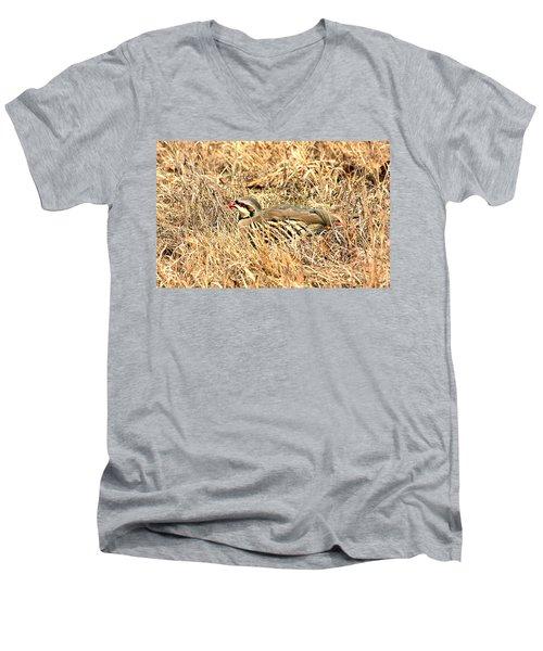 Men's V-Neck T-Shirt featuring the photograph Chuckar Bird Hiding In Grass by Sheila Brown