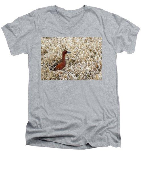 Cinnamon Teal Men's V-Neck T-Shirt