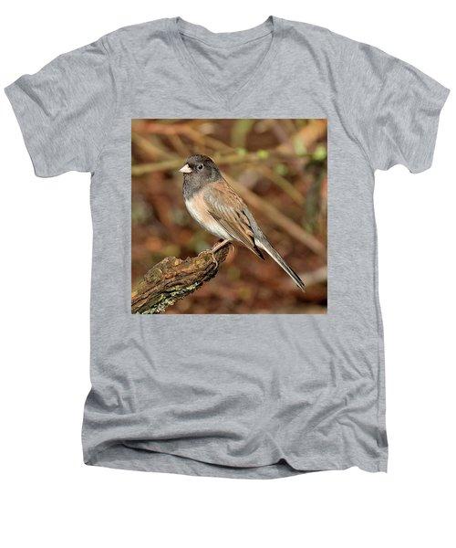 Classic Men's V-Neck T-Shirt by Sheldon Bilsker