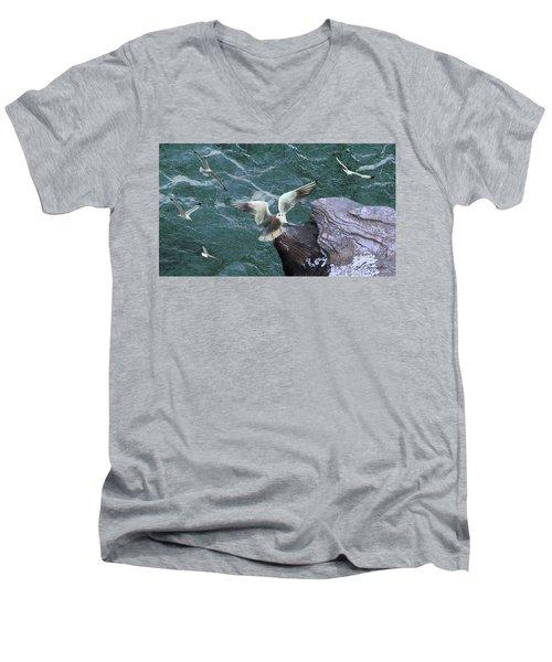 Cliffs Of Davenport Men's V-Neck T-Shirt