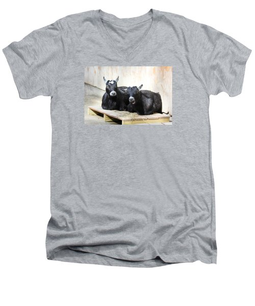 Men's V-Neck T-Shirt featuring the photograph Close To You by Trina  Ansel