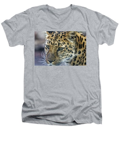 Close Up Of Leopard Men's V-Neck T-Shirt