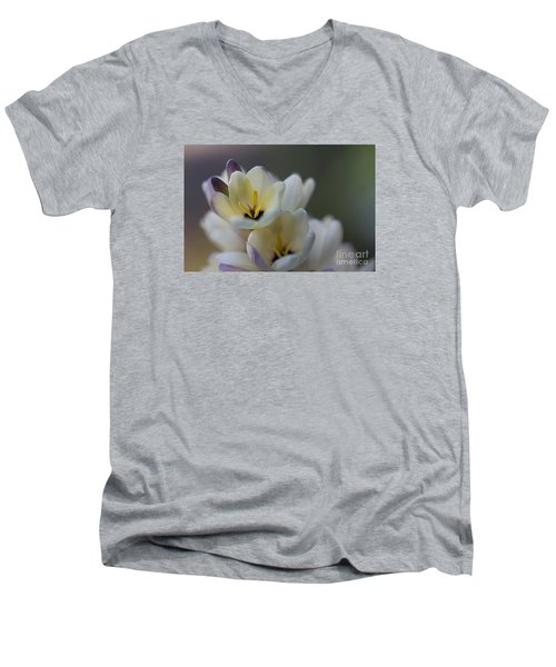 Close-up Of White Freesia Men's V-Neck T-Shirt