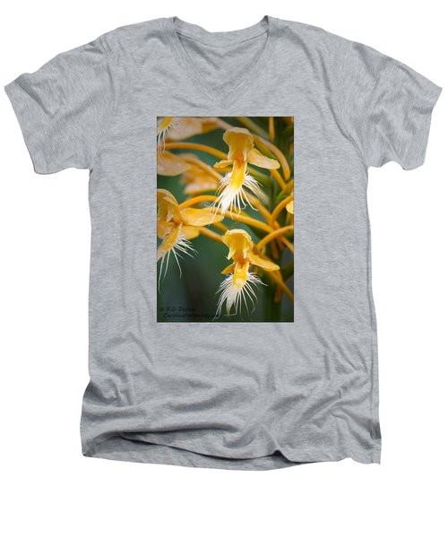 Men's V-Neck T-Shirt featuring the photograph Close-up Of Yellow Fringed Orchid by Bob Decker