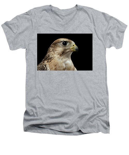 Close-up Saker Falcon, Falco Cherrug, Isolated On Black Background Men's V-Neck T-Shirt by Sergey Taran
