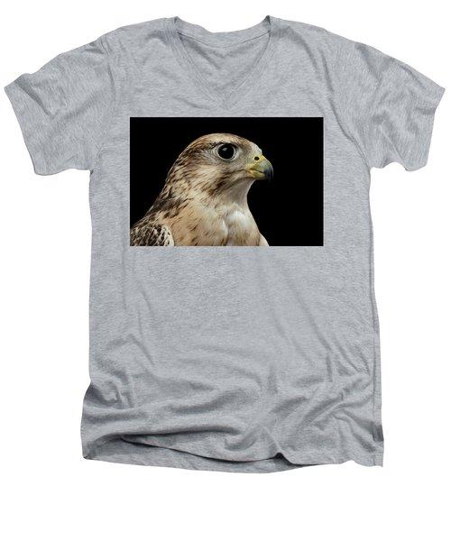 Close-up Saker Falcon, Falco Cherrug, Isolated On Black Background Men's V-Neck T-Shirt