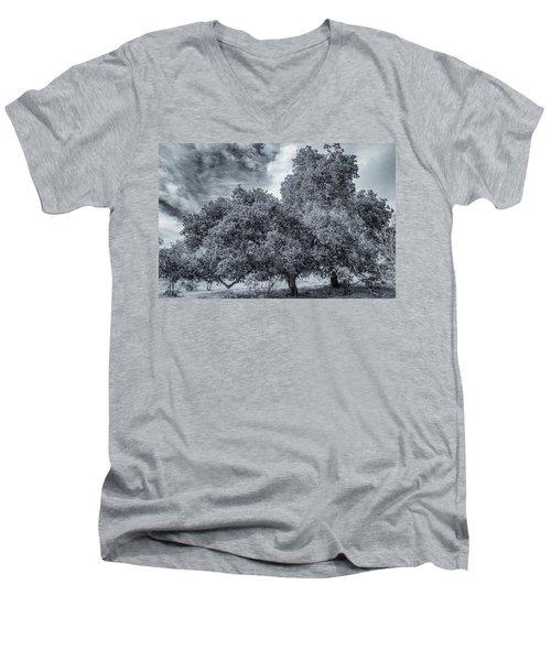 Coast Live Oak Monochrome Men's V-Neck T-Shirt