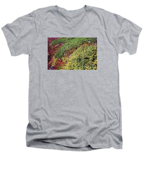 Coastal Flowers And Ice Plant Men's V-Neck T-Shirt by Ted Pollard