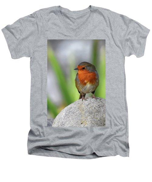 Cocky Robin Men's V-Neck T-Shirt